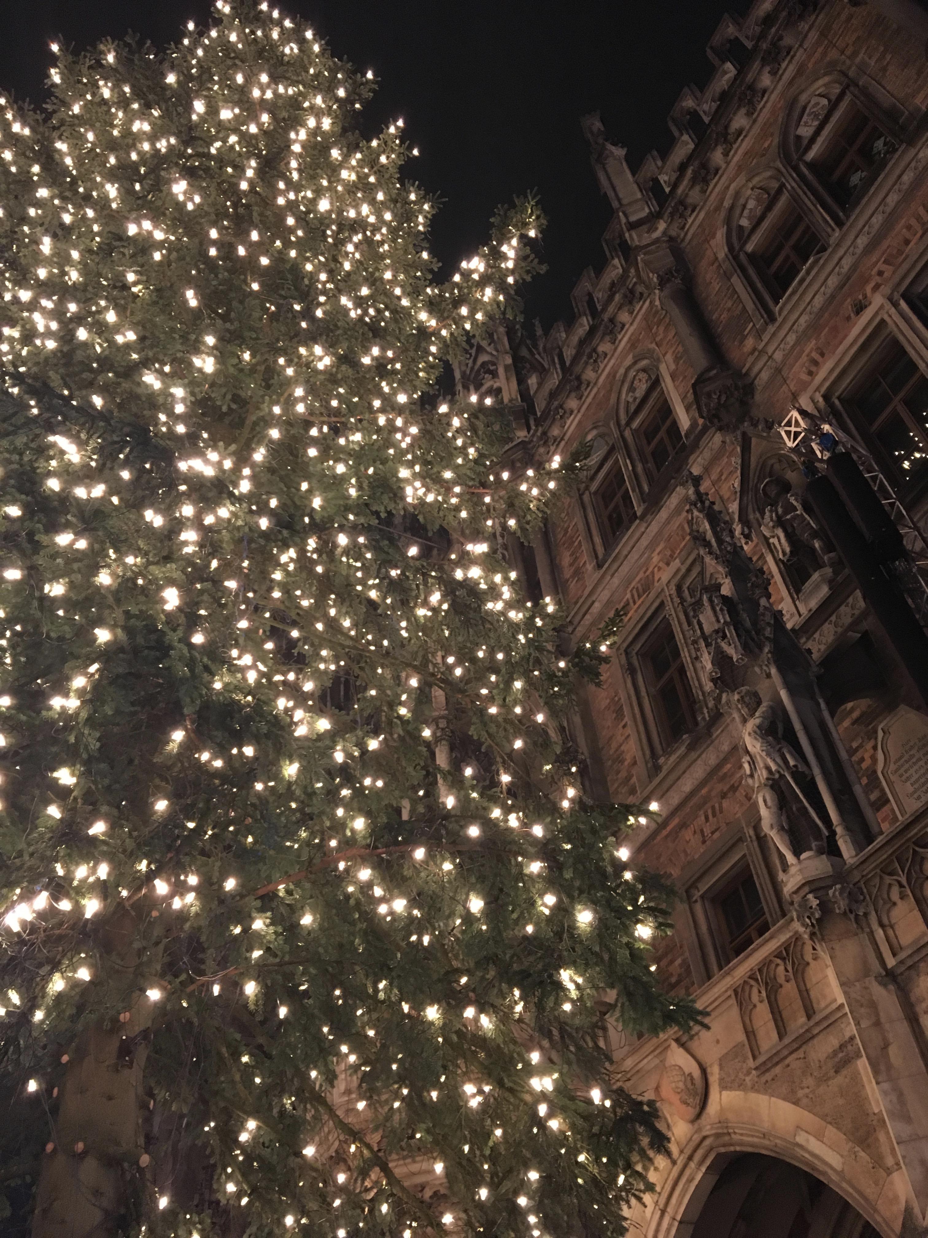 Weihnachtsbaum München